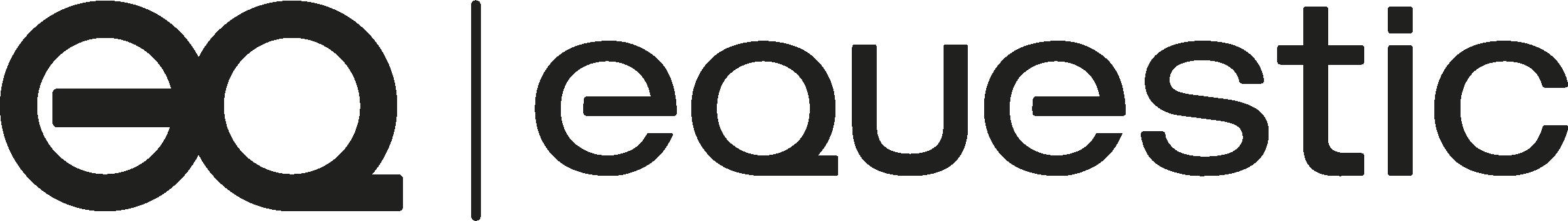 Equestic Saddleclip