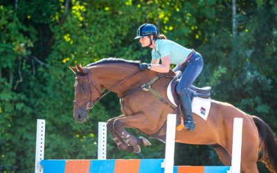 Why is the straightness of your horse so important?