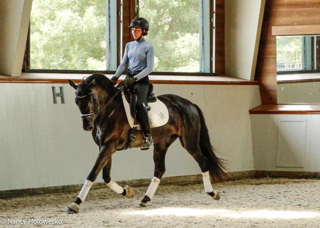 Effectief dressuur paarden trainen